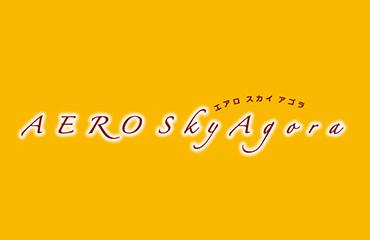 エアロのブログ